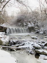 Photo: Beautiful winter scene of snowy trees and a misty waterfall at Eastwood Park in Dayton, Ohio.