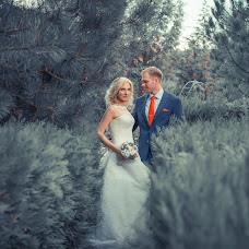 Wedding photographer Andrey Tolstyakov (D1cK). Photo of 06.11.2016