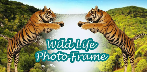 Amazing Wildlife Photo Frame for PC