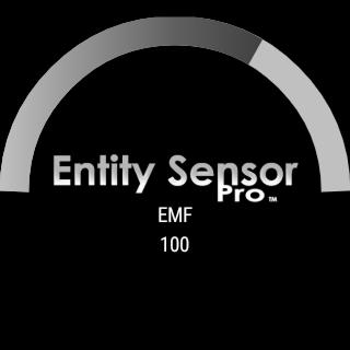 Entity Sensor Pro-EMF Detector- screenshot
