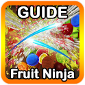 Guide and Cheats Fruit Ninja icon