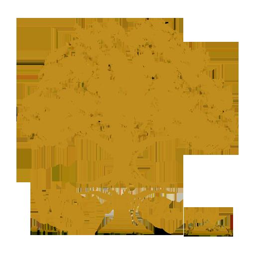 WSDirectSelling