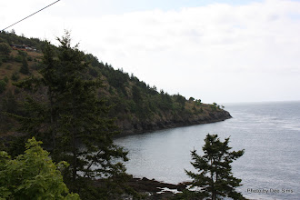 Photo: (Year 2) Day 335 - Lime Kiln State National Park (Whale Watching Area)