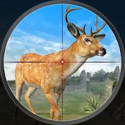 Deer Hunting Season Safari Hunt
