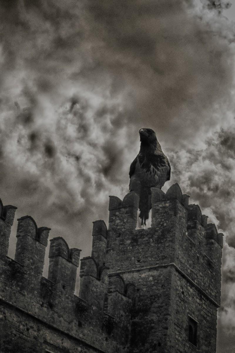 Il corvo a tre occhi di ocram69