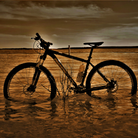 by Benito Flores Jr - Transportation Bicycles (  )