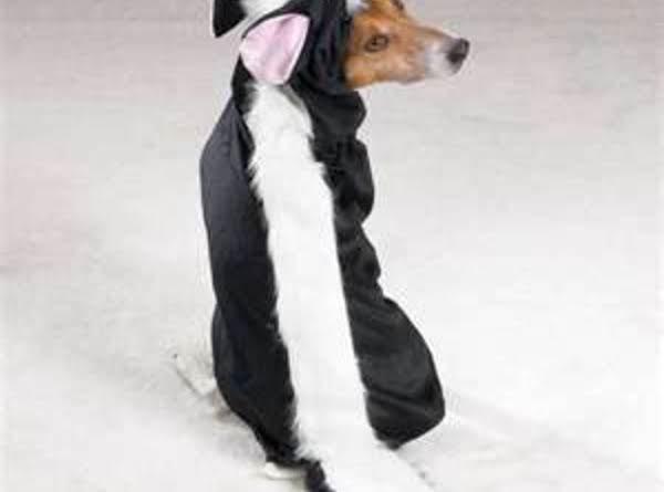 Pet Costumes At Halloween