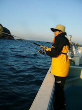 Photo: ヨコハマさんもキャストで! FISH!