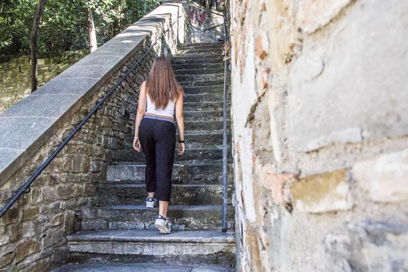 Ancora 260 scalini e poi è fatta! di Ph. Flavio Catelani