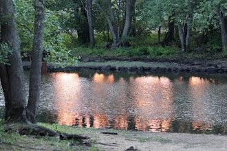 Photo: River sunset