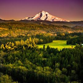 Mt. Hood by Becca Fieken - Novices Only Landscapes ( oregon, mountain, sunset, colors, green, sandy river, forest, hood,  )