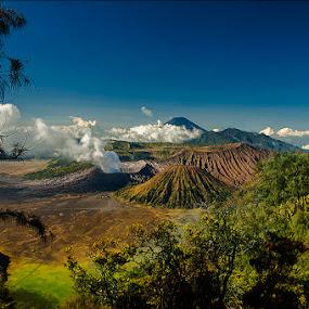 Bromo by Erry Subhan - Landscapes Mountains & Hills ( sand, mount bromo, tourism, mount batok, travel, volcano, bromo tengger national park, indonesia, asia, rain forest, java, bromo, eruption )