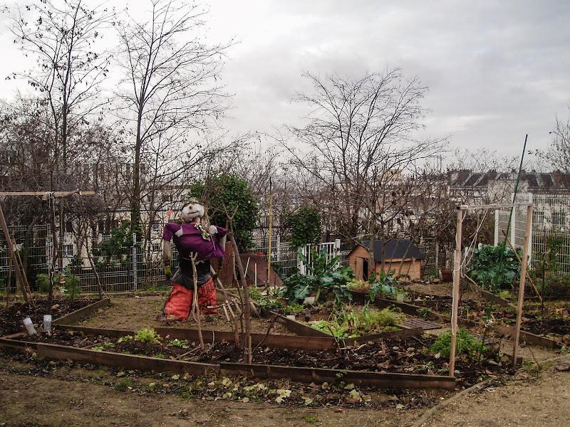 Agricoltura urbana di D. Costantini