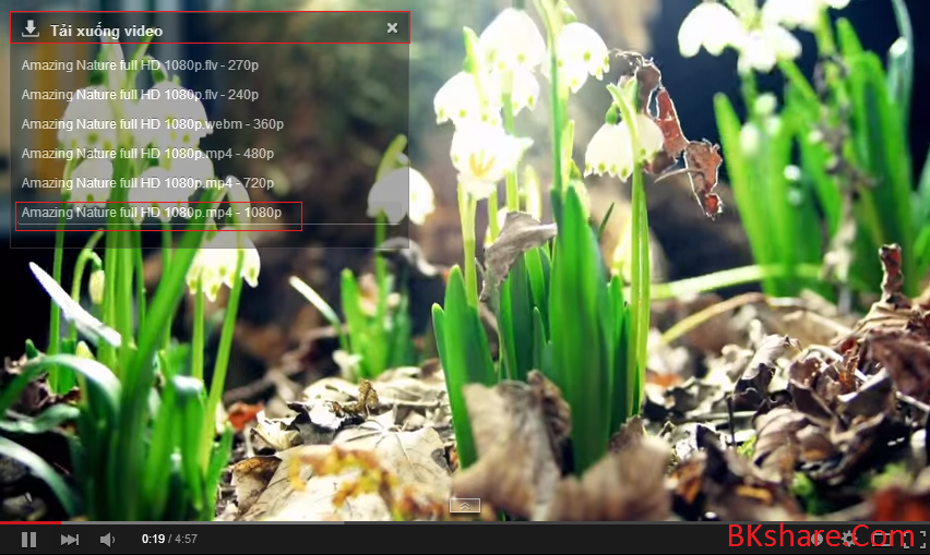 Download Bchrome - Trình duyệt siêu nhẹ