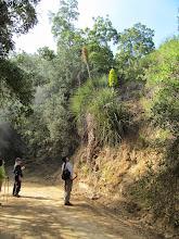 Photo: Observando un Chagual Sector Granizo