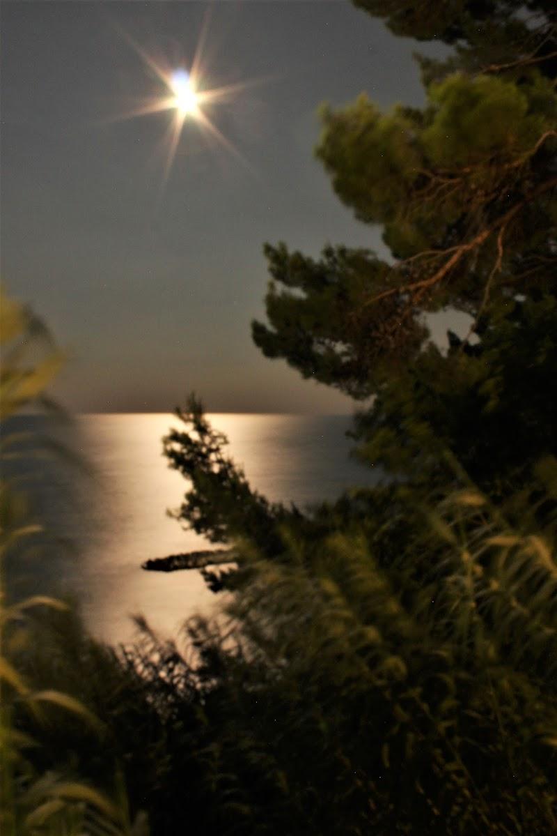 Notte di mezza estate di Susix