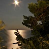 Notte di mezza estate di