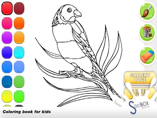 玩免費教育APP|下載オウムの塗り絵 app不用錢|硬是要APP