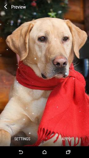 聖誕狗動態壁紙