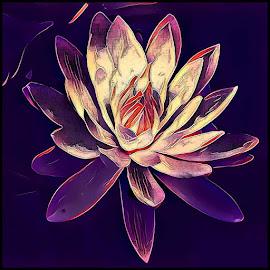 by Jennifer Blair - Illustration Flowers & Nature