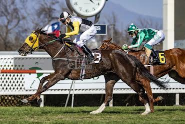 Marisela (Aragorn) gana Handicap (1100m-Pasto-CHS).