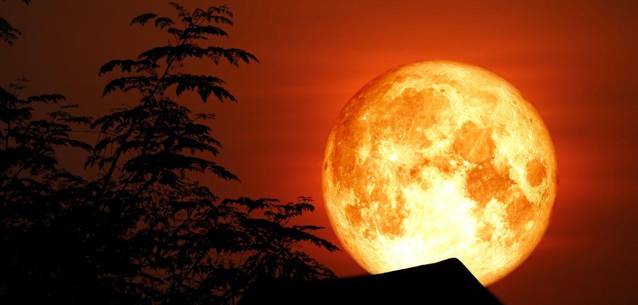 Đón siêu trăng sáng và lớn nhất 2021 trong tháng 5 - ảnh 1