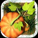 Pumpkin Path icon