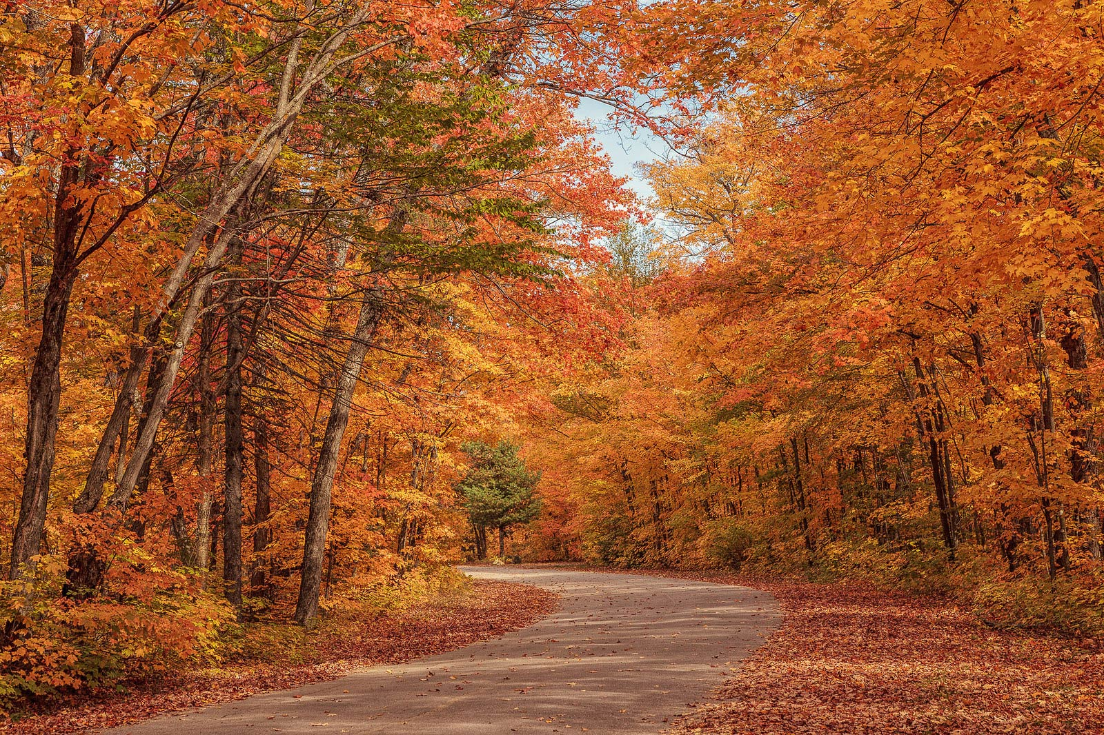 10 places in Canada to see gorgeous fall foliage - Cruiseable