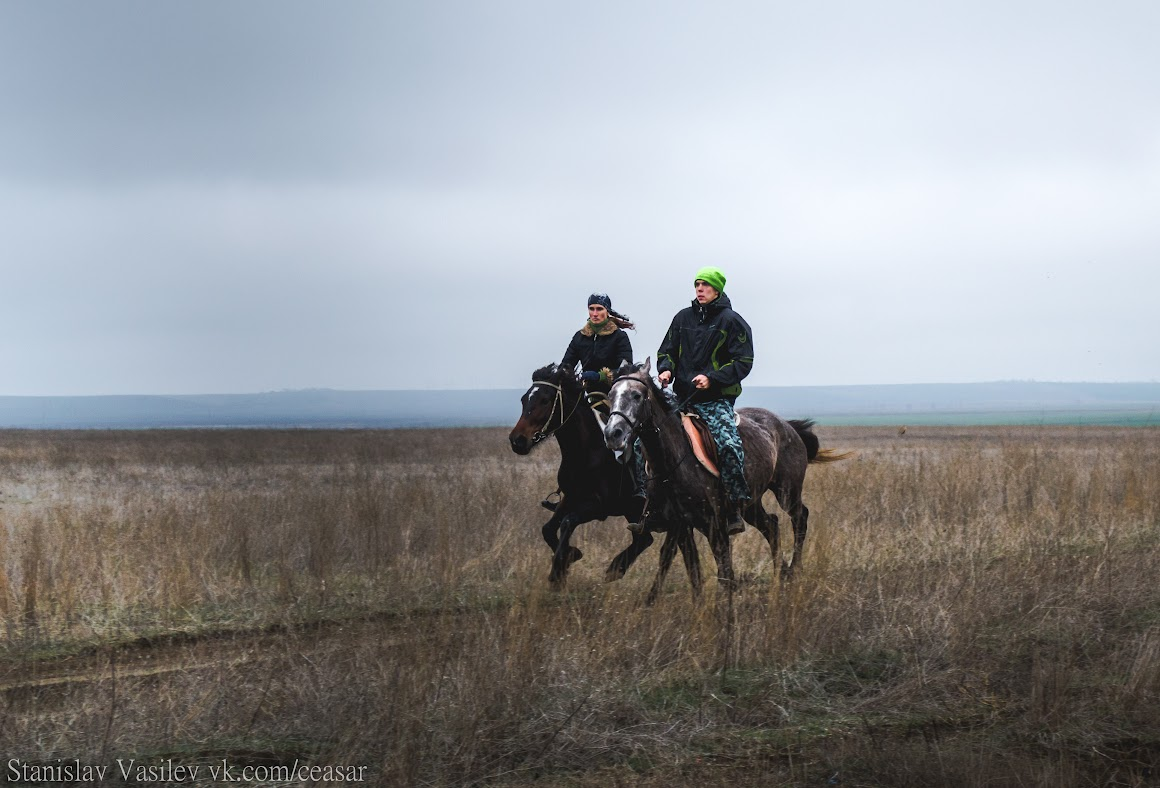 Катание на лошадях в Крыму