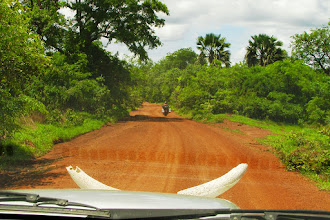 Photo: Heading to Labe within the tropical forest