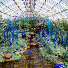 Chihuly Garden of Blue - Phipps 2007 by Dee Haun - Artistic Objects Glass ( 2007, chihuly, pittsburgh, blue, delicate, phipps conservatory, 070831x0216e1, green, columns, glass, pennsylvania, artistic objects,  )