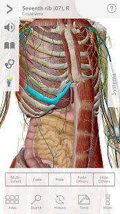 Human Anatomy Atlas Screenshot 1