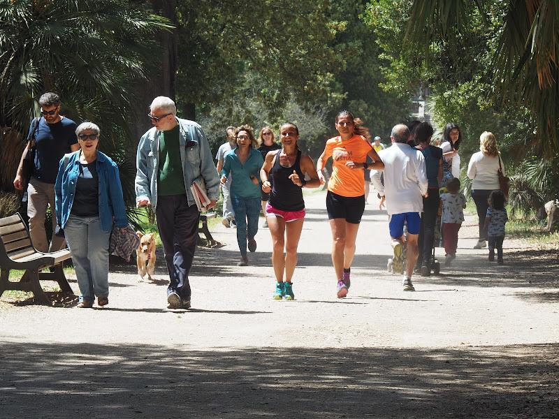 Chi corre e chi passeggia di samoano68