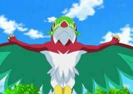 hawlucha the forest champion