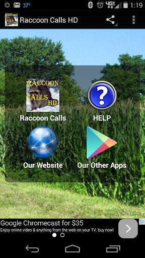 Raccoon Calls HD
