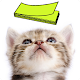 Cat Sticky Note Notepad for PC Windows 10/8/7