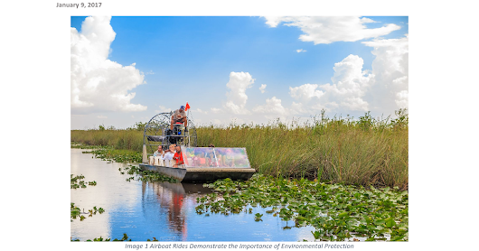 Airboat Rides from Everglades City Can Bolster Environmental Consciousness and Responsible Behavior - Google Drive