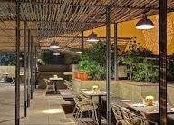 Cafe Lota photo 6