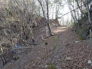 古い林道に出合う
