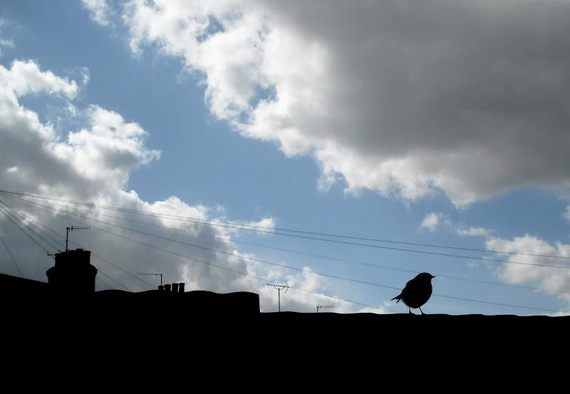 Sotto le nuvole di Londra... di MarinaF
