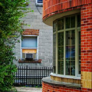 taylor library.jpg