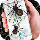 Spinne im Handy Lustiger Witz icon
