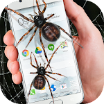 Spider in phone funny joke Icon