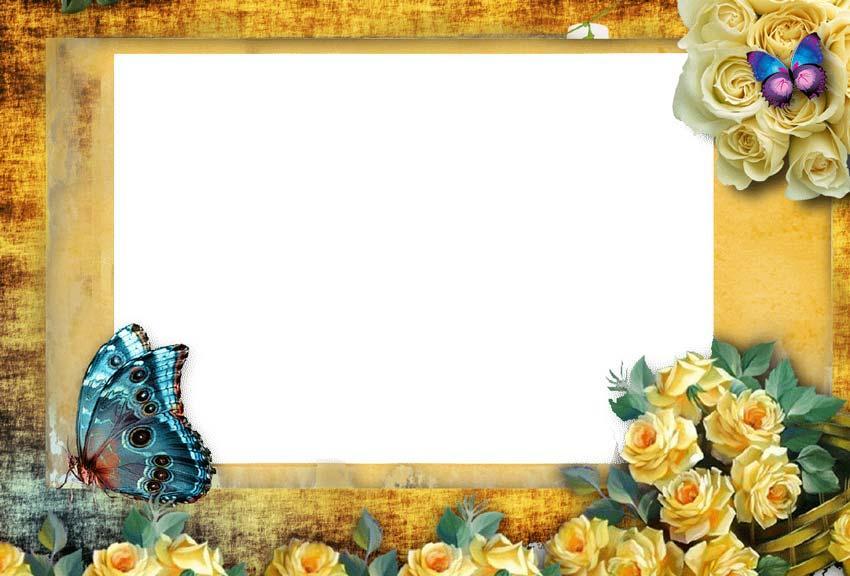 butterfly photo frame effect screenshot