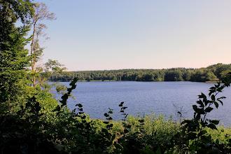 Photo: Blick auf den Großensee von einen Spazierweg entlang des Westufers