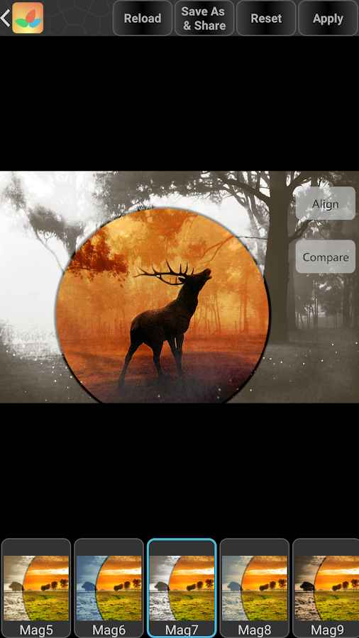 Bonfire Photo Editor Pro- screenshot