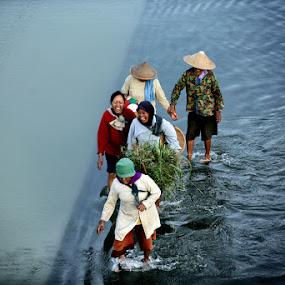 joy the women farmers by Axl Digital's - People Street & Candids