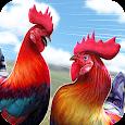 Wild Rooster Run - Frenzy Chicken Farm Race