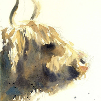 Highland cow painting wildlife art