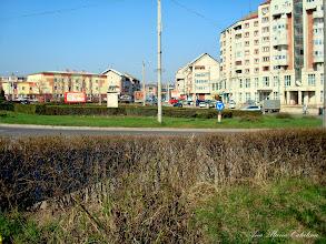 Photo: 2009.04.04
